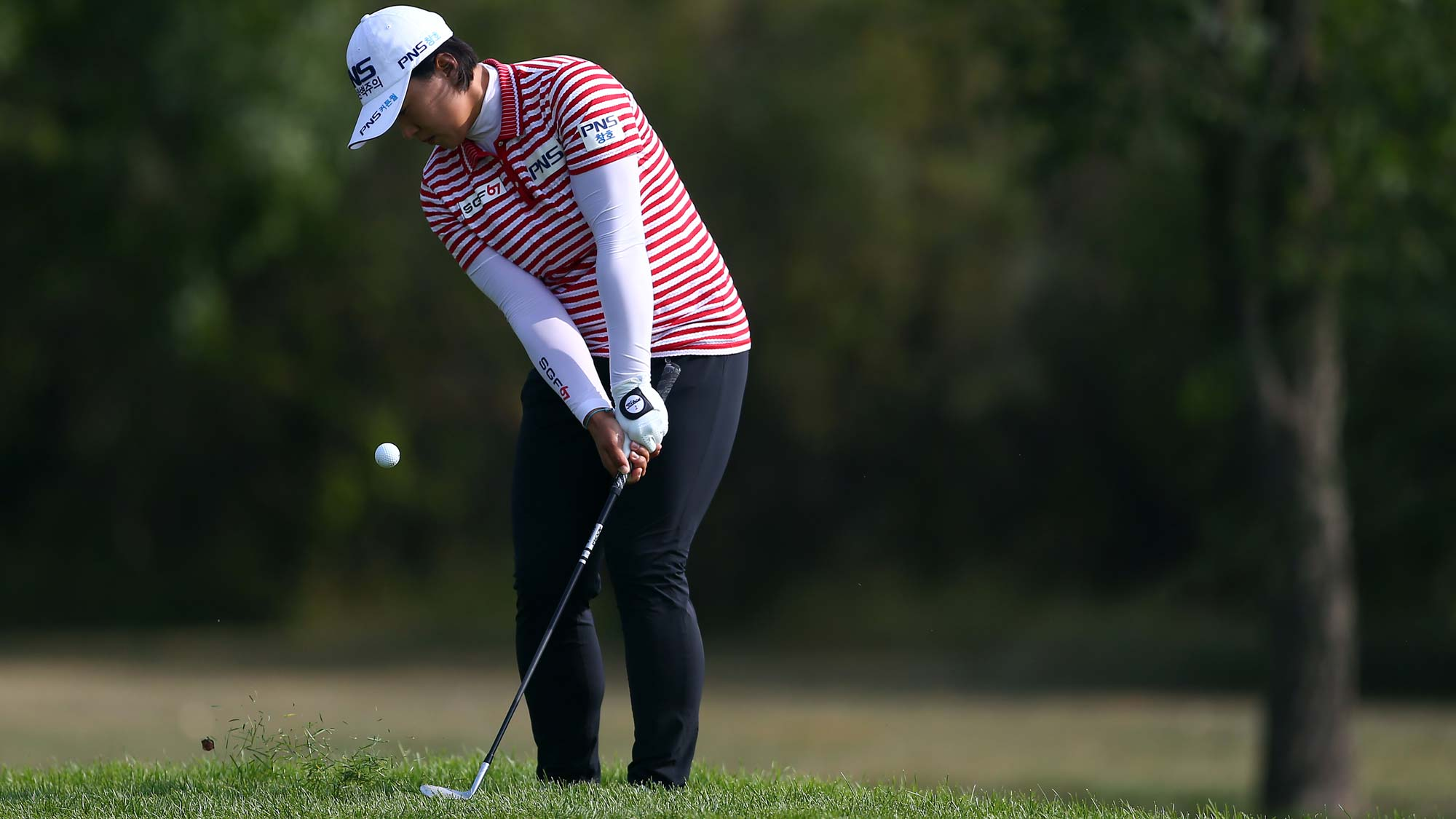 Amy Yang of Korea chips onto the 16th green during the second round of the CP Womens Open